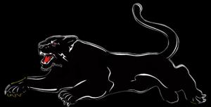 icone puma AMTARC club de tir meauzac